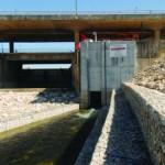 Restrições à pesca no Mondego visam permitir desova  a montante de Coimbra
