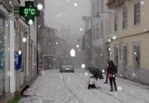 Neve Guarda