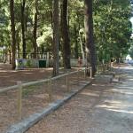 """Parque do Buçaquinho abre renovado como """"exemplo de inovação ambiental"""""""