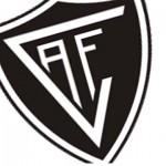 Académico de Viseu diz que TAD aceitou suspensão da exclusão das competições profissionais