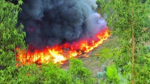 03 incendios em 2012