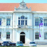 Câmara da Mealhada apela à limpeza de terrenos