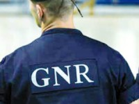 Cinco detidos por tráfico de droga em Mangualde