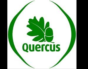 logo_quercus DR