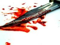 Homicídio na Granja do Ulmeiro (em atualização)
