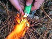 PJ deteve suspeito de dois incêndios florestais em S. Pedro do Sul