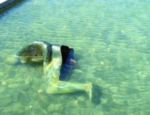 Parte de uma das peças foi parar ao lago do Forte de Santa Catarina. FOTO CLÁUDIA TRINDADE