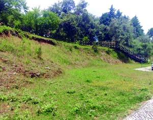 Nova mata e jardim ao cimo do bairro são localizações possíveis para o parque. FOTO DR