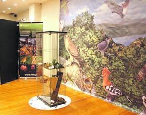 Mostra está no primeiro piso do centro comercial. FOTO DR