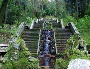 Câmara da Mealhada destaca valor nacional do Buçaco