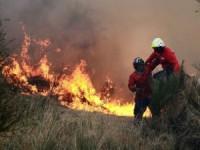 Pampilhosa da Serra, Gois e Miranda do Corvo em risco elevado de incêndio