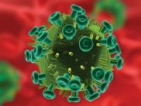 Estudo descreve caso de criança infetada por VIH que se manteve saudável