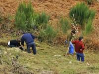 Alunos de Medicina da Covilhã promovem ação de reflorestação na Serra da Estrela