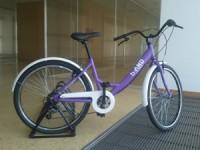 Anadia arranca com sistema de bicicletas gratuitas