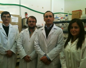 "Investigadores de Coimbra dão ""importante contributo"" para terapia génica"