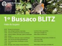 Bussaco Blitz desafia visitantes a serem biólogos por um dia