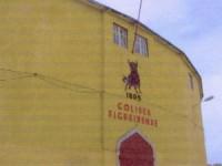 Festa da Sardinha cancelada para o Coliseu Figueirense