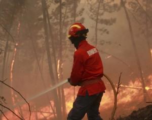 Fogo em Arganil assustou mas já foi extinto