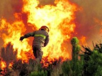 Planeamento e combate às chamas exige formação especializada