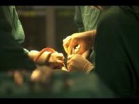Transplante de rim lidera largamente em Portugal