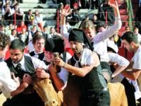 Forcados, toureiros e bandarilheiros retirados da Garraiada de Coimbra