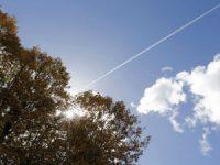 Bom tempo regressa no fim de semana com céu pouco nublado e subida da temperatura