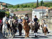 Feira de Santa Cruz em Lamego valoriza arte equestre