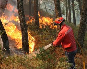 incendio florestal DR
