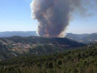 Quase 300 bombeiros esta tarde em incêndio de Góis