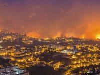 gc_incendios_madeira_207605d6cf_capa1