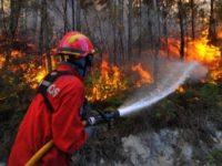 Fogo deflagrou hoje na Pampilhosa da Serra