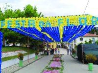 Cinco mil flores enfeitaram rua em Casal de São João