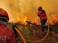 Mais de 2.000 bombeiros combatiam 147 fogos às 11H00 deste sábado