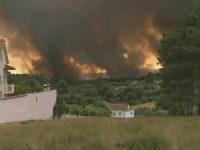 20 mil hectares de baldios arderam no distrito de Coimbra