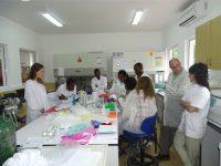 14 escolas médicas reunidas em Coimbra a partir de hoje