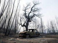 """Governo quer cadastro em """"zona piloto"""" atingida pelos fogos"""