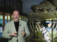 Delfim Sardo é o curador da Bienal Anozero'17