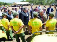 """António Costa garante que """"o Governo tem coragem"""" para fazer o cadastro florestal do país"""