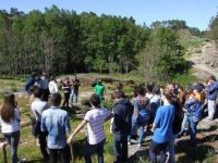 Câmara de Oliveira do Hospital deteta lapsos na lei de defesa da floresta