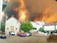 Câmara de Seia aponta para intervenção humana no fogo do Sabugueiro