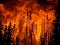 Seis mortes confirmadas nos fogos de domingo