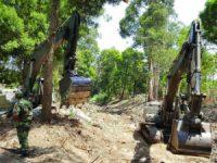 Exército limpa 45 km de lagoas e ribeiras