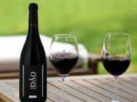 Vinho do Dão vai ter um museu virtual