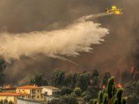 Fogo que teve início a 15 de outubro no concelho da Lousã foi acidente com cabo elétrico