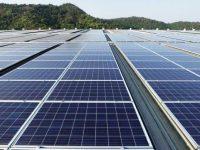 Central fotovoltaica a instalar em Tábua prevê 150 mil painéis