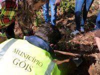 Motards entregaram 400 castanheiros a Góis