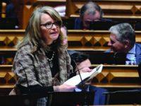 PSD dá 90 dias ao Governo para decidir nova maternidade
