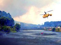 Autor de incêndio na Serra da Lousã começa hoje a ser julgado
