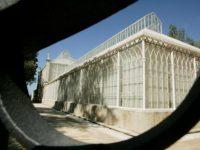 Jardim Botânico da UC abre ao público estufas renovadas
