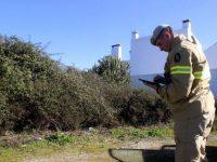 Mais de dois mil pedidos de esclarecimento à GNR sobre limpeza de matas